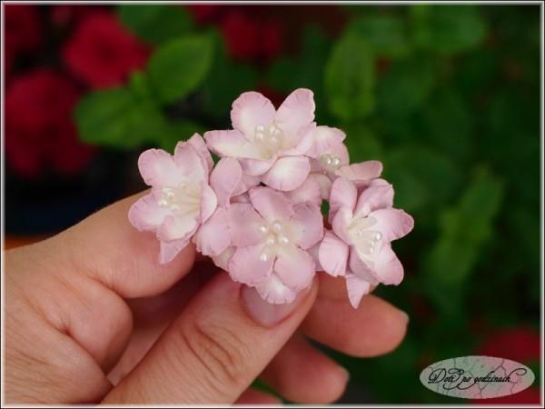 Kwiatki13